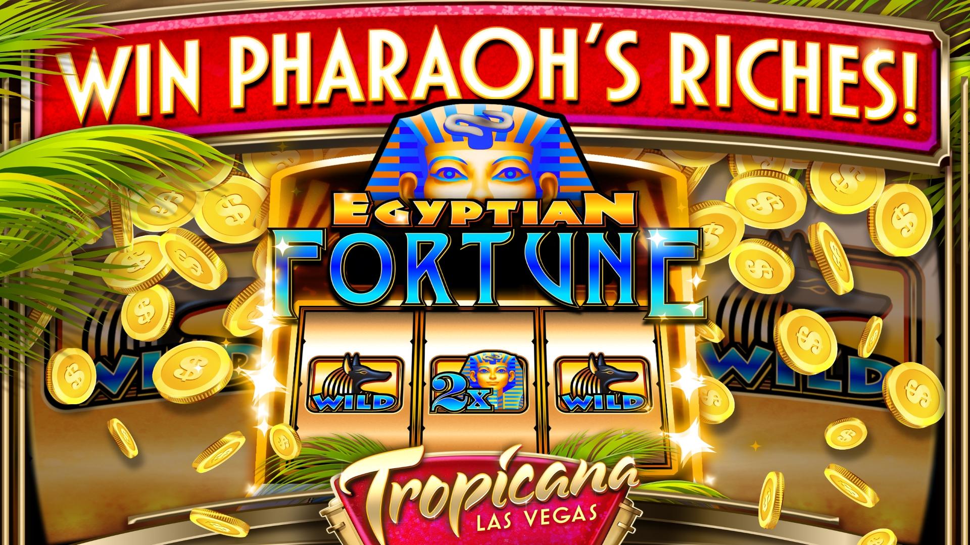 Vegas Casino 33805