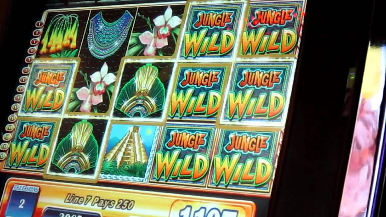 Casino Bonus Real 65146